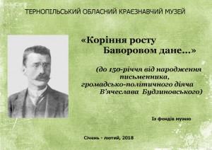 Будзиновський, лютий 2018