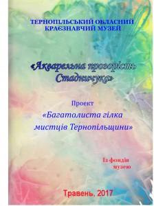 Стадничук 2017